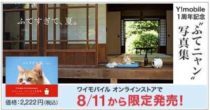 ふてニャン写真集2222円